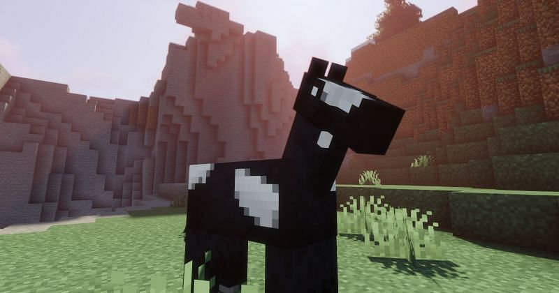 How to Tame a Horse in Minecraft | Step by Step